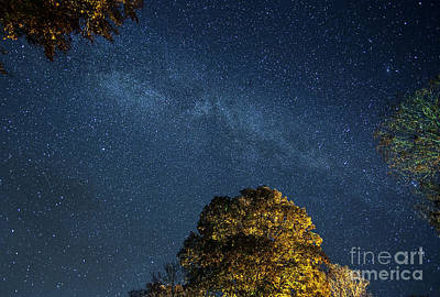 Print featuring the photograph Starry Skies by Martin Konopacki