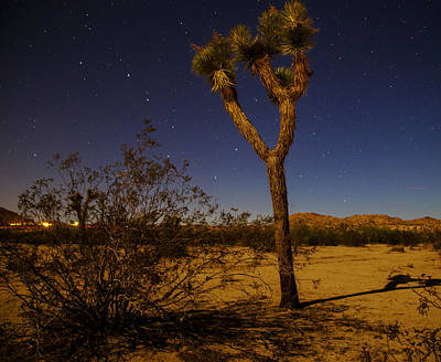 Photograph - Starry Starry Night by Kunal Mehra