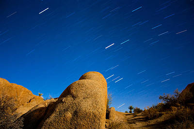 Photograph - Stars Trails On Winter Solstice by Kunal Mehra