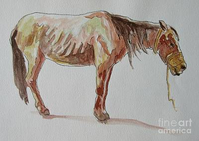 Nutrition Drawing - Starving Horse In Cuba by John Malone