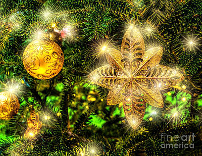 Photograph - Stary Christmas by Nick Zelinsky
