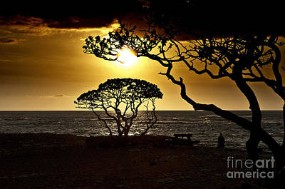 State Park Sunset Art Print by Karl Voss