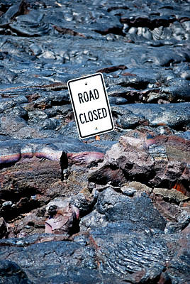 Photograph - Stating The Obvious by Christi Kraft