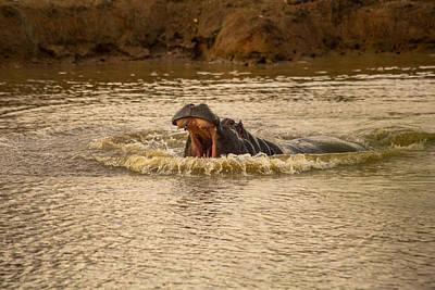Stay Away From My Waters Hippo Art Print by Eti Reid