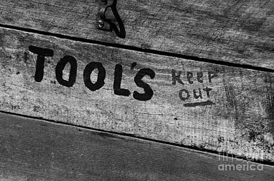 Photograph - Stay Away From The Tools by Wilma  Birdwell