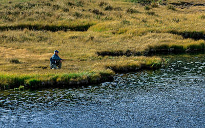Photograph - Stealth Fishing by Roger Mullenhour