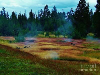Steam Marsh Art Print