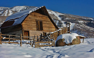 Photograph - Steamboat Barn by Don Schwartz