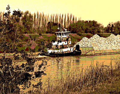 Photograph - Steamboat Slough And A Cat by Joseph Coulombe
