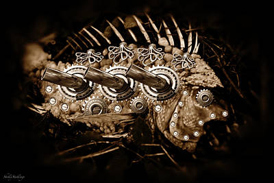 Photograph - Steampunk Fish by Shelly Stallings