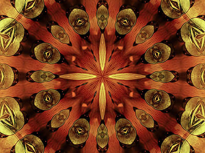 Photograph - Steampunk Kaleidoscope 3 by Shawna Rowe
