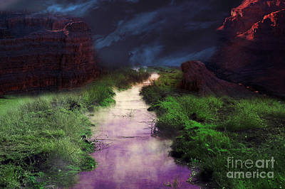Photograph - Steamy Creek by Gunter Nezhoda