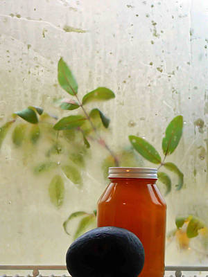 Avacado Photograph - Steamy Window by Pamela Patch