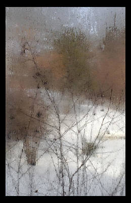 Photograph - Steamy Window by Tim Nyberg