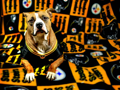 Pitbull Rescue Dog Football Fanatic Art Print