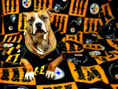 Pitbull Rescue Dog Football Fanatic Art Print by Shelley Neff