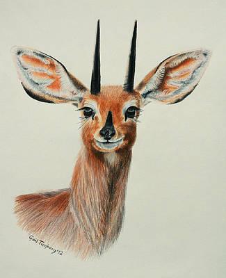 Steenbok Smile Art Print