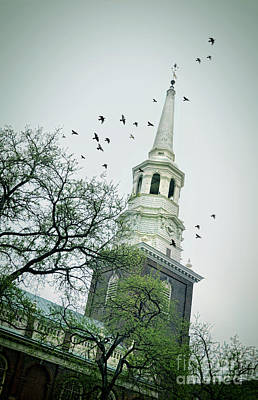 Photograph - Steeple Of Old Church With Birds by Jill Battaglia