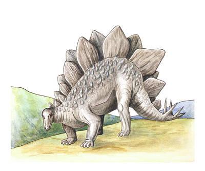 Paleozoology Photograph - Stegosaurus by Deagostini/uig