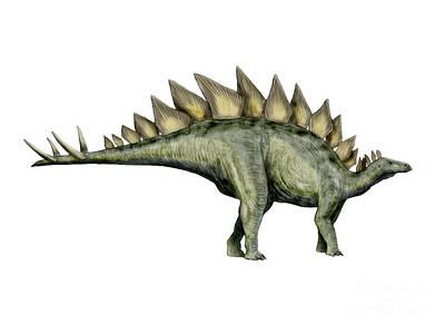 Triassic Digital Art - Stegosaurus Dinosaur by Nobumichi Tamura