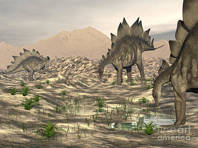 Triassic Digital Art - Stegosaurus Dinosaurs Searching by Elena Duvernay