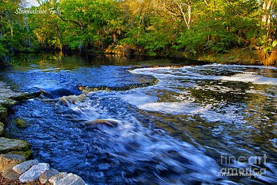 Photograph - Steinhatchee Falls by Barbara Bowen