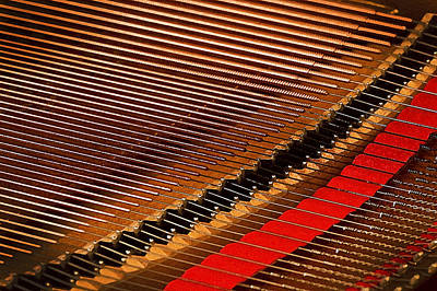 Steinway Grand Piano Wall Art - Photograph - Steinway Piano Strings Db by Rich Franco