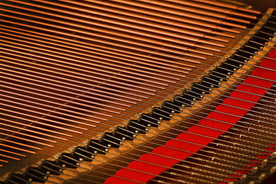 Steinway Grand Piano Wall Art - Photograph - Steinway Piano Strings by Rich Franco