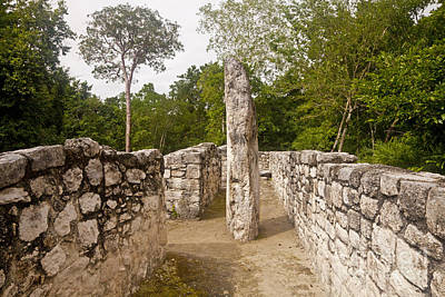 Stela Photograph - Stelae And Foundation At Calakmul Ruins by Ellen Thane