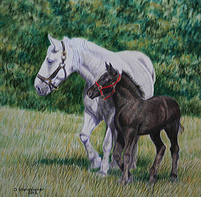 Mare Drawing - Steppin' Out by Debbie Stonebraker
