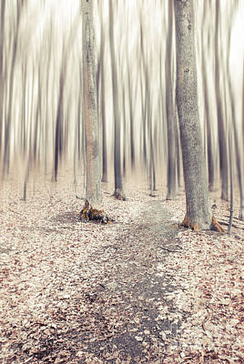 Steppin' Through The Last Days Of Autumn Art Print by Hannes Cmarits