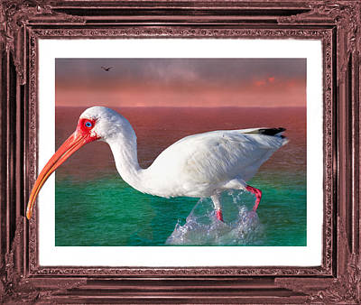 Ibis Digital Art - Stepping Out by Betsy Knapp