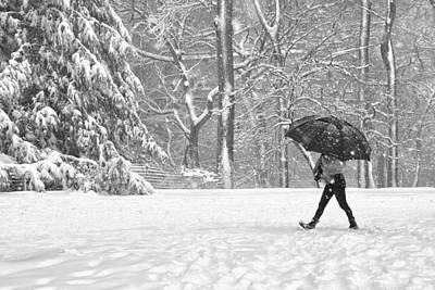Photograph - Stepping Throught The Snow by Cornelis Verwaal