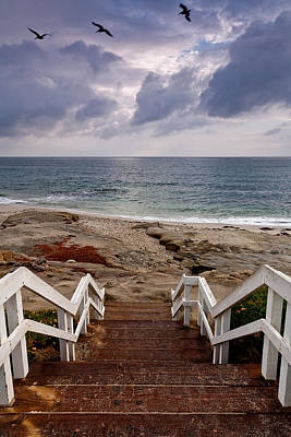 Windnsea Photograph - Steps And Pelicans by Peter Tellone