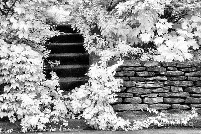 Steps And Stones Art Print by Jeff Holbrook