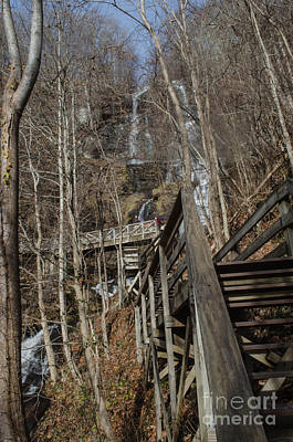 Photograph - Steps At Amicalola Falls by Donna Brown