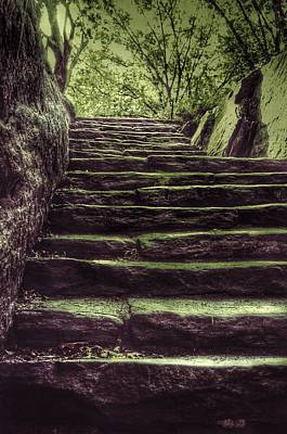 Photograph - Steps In Central Park - New York by Marianna Mills