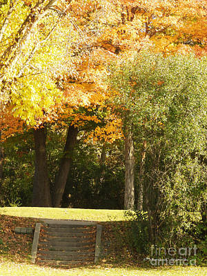 Photograph - Steps Leading Away From Canal Into Park - M Landscapes Fall Collection No. Lf27 by Monica C Stovall