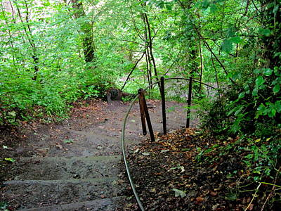 Photograph - Steps Through Roslin Glen by Denise Mazzocco
