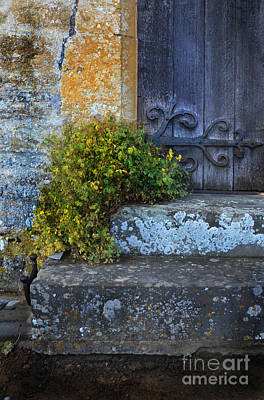 Photograph - Steps To Church Door by Jill Battaglia