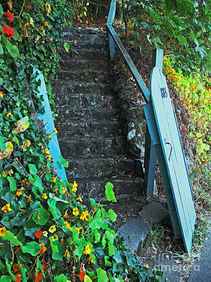 Steps To Somewhere Art Print by Connie Fox