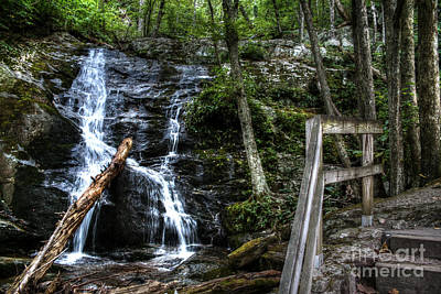 Photograph - Water Falls To The Magical Kingdom by Doc Braham