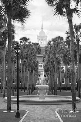 Photograph - Stetson University Palm Court Fountain by University Icons