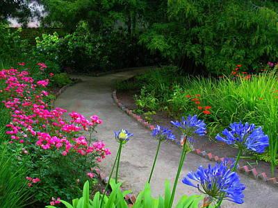 Photograph - Stevenson House Garden by Derek Dean