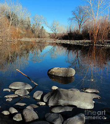 Photograph - Stick In The Mud by David Taylor