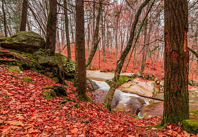 Photograph - Stickney Brook 2 by Jeremy Farnsworth