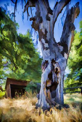 Tree Photograph - Still Got It by Scott Campbell