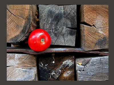 Photograph - Still Life Composition - Tomato Red Point by Daliana Pacuraru