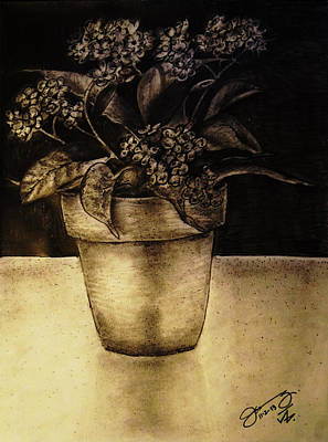 Still Life Drawings - Still Life Flower Pot with Forget Me Nots by Jose A Gonzalez Jr