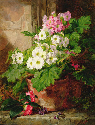 Pots Of Flowers Painting - Still Life Of Primulas by Martha Darley Mutrie